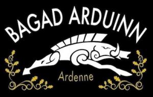 BAGAD ARDUINN